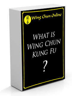What is Wing Chun