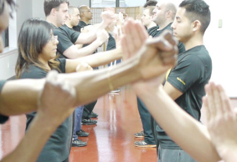Wing Chun Classes