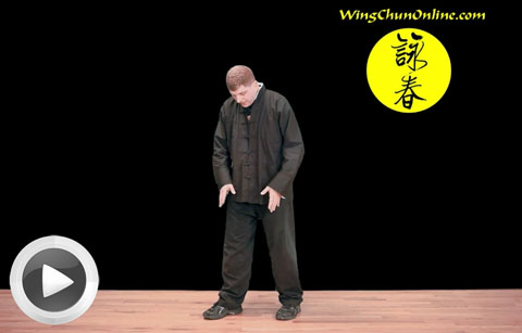 Wing Chun Online Program